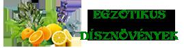 Egzotikus dísznövények Logo